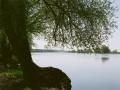 granica_Landschaft_Oder_links