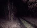 dunkles_land_Fahrt_NEU_01